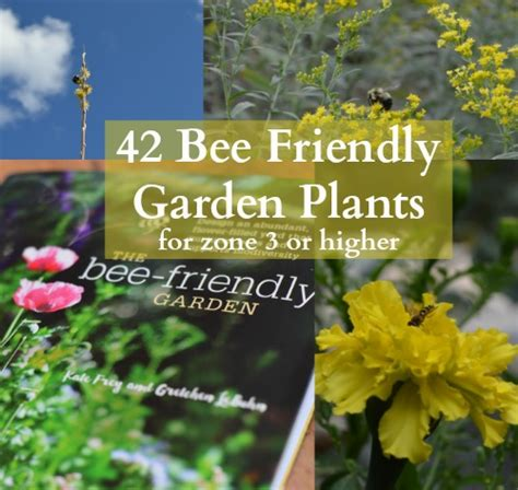 the bee friendly garden easy ways to help the bees and make your garden grow books 42 bee friendly garden plants for zone 3 or higher
