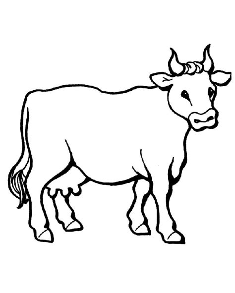 coloring pages cows free printable cow face clip art cliparts co