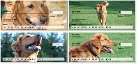 golden retriever personal checks golden retriever checks petchecksdirect