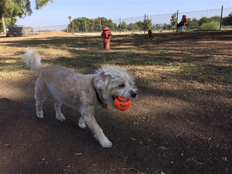 leash parks near me sepulveda basin leash park 210 photos 245 reviews parks 17494