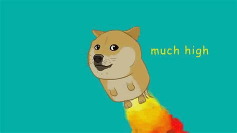 gif animated gifs 7chan wow such flight doge know your meme