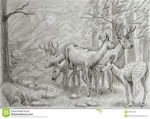 familia de los ciervos imagen de archivo libre de regal 237 as