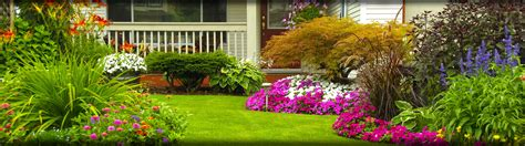 pictures of landscaping home landscaping lawn care blades of boerne tx