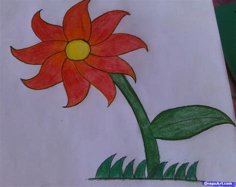 flower easy learn how to draw a flower easy flowers for for