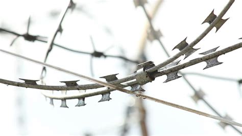 barbed wires with spikes rack focus stock footage