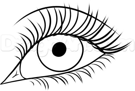 Drawing Eyelashes by How To Draw Eyelashes Step By Step Free