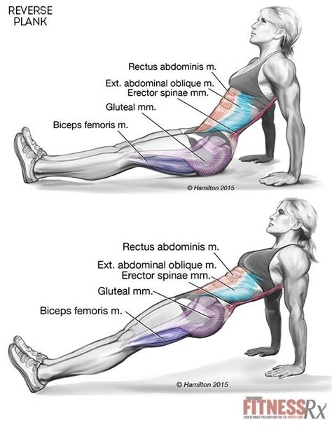 plank to strengthen your and lower
