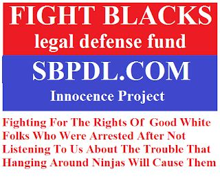 stuff black people dont like sbpdl stranger s in a politics priorities psychology and hope within the black