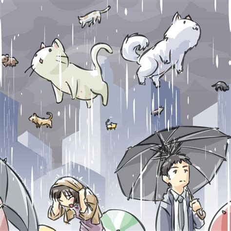 it s raining cats and dogs drop something on the person below you 2 0 page 18 itsjerryandharry