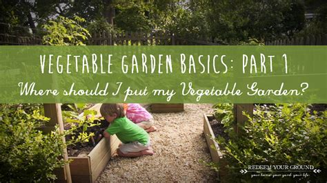 family vegetable garden family vegetable garden archives redeem your ground