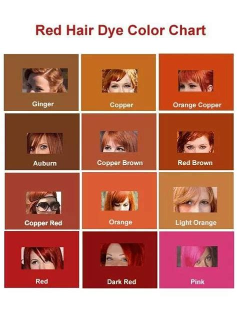 ginger colour chart red hair dye color chart love pinterest