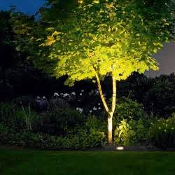 landscape tree lighting outdoor lighting 101 landscaping lights and outdoor lighting