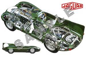 Jaguar C Type Chassis Drawings Jaguar D Type S 1954 Racing Cars