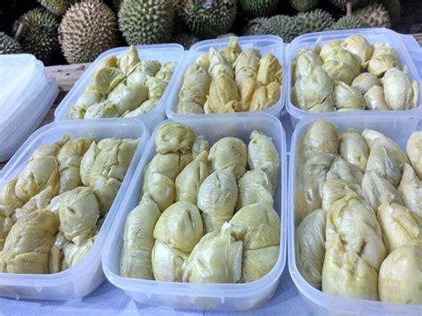 supplier agen reseller bisnis durian medan ucok durian
