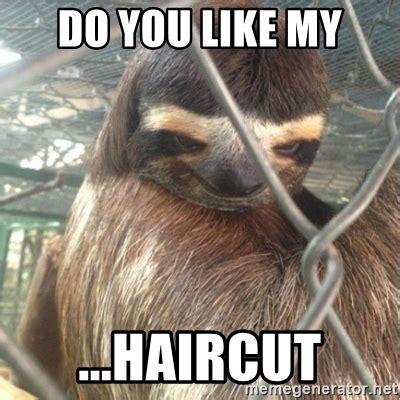 Sloth Meme Maker - haircut meme sloth haircuts models ideas