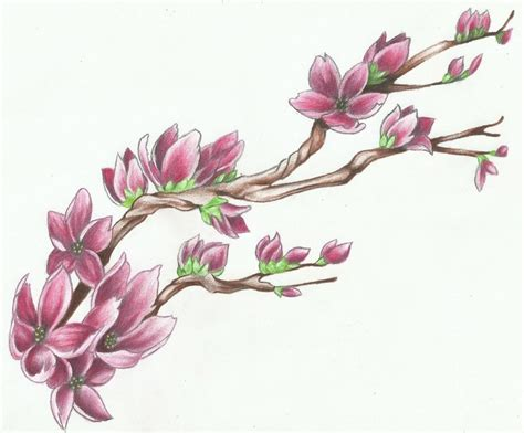 cherry blossom branch tattoo designs cherry blossom design ideas 2016 on