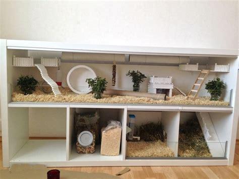 Living Room Ideas Habitat Die Besten 17 Ideen Zu Hamsterk 228 Fige Auf Igel