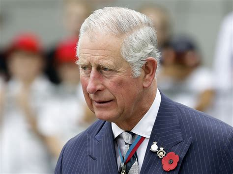 prince charles prince charles lobbied for climate policy change without