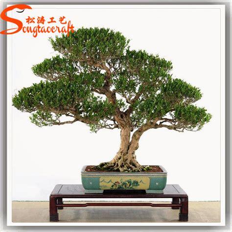 chinese make artificial trees factory ofartificial banyan natural fake plastic artificial banyan tree bonsai plants