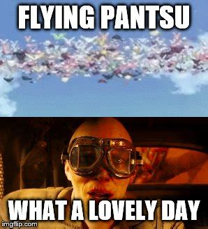 pantsu day imgflip