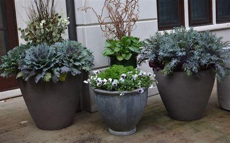 vasi per piante grandi dimensioni i vasi per piante vasi per piante modelli vasi