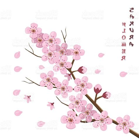 japanese blossom tree hd blossom japanese cherry tree vector drawing