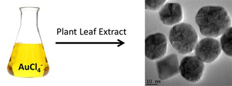 biosynthesis of nickel nanoparticles using leaf extract of nanomaterials free full text synthesis of gold