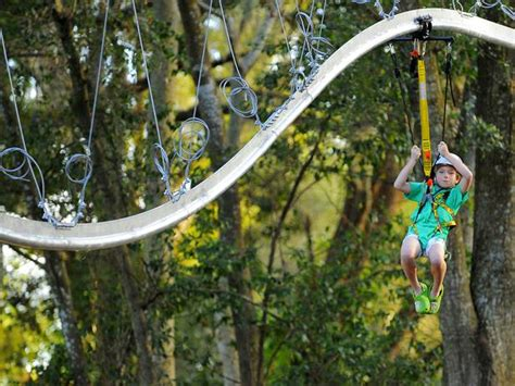 how to make a backyard zip line magical backyard makeovers landscaping ideas and