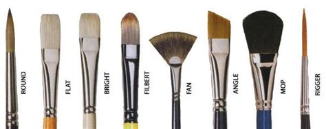 Paint Brush Hair Types by Paintbrush