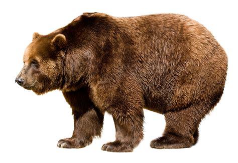 christmas in big bear