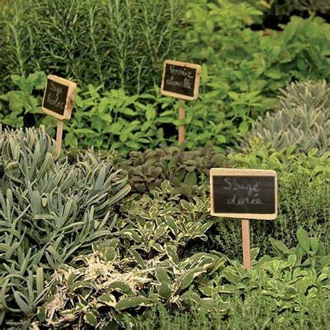 les herbes aromatiques en cuisine les herbes aromatiques bio en cuisine 224 marseille