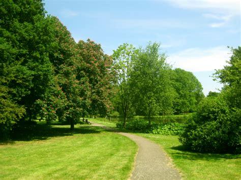 imagenes deareas verdes caminar en 225 reas verdes relaja la mente las buenas noticias