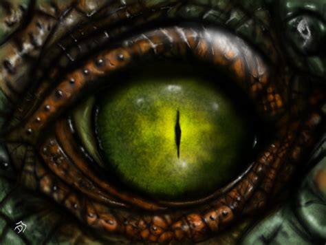 Kaos 3d Snake Eye reptile eye by knabobar on deviantart