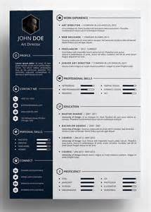 Cool Resume Templates by 25 Best Ideas About Cv Template On Layout Cv