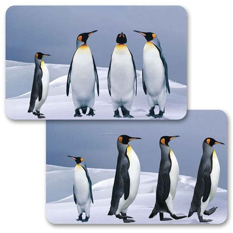 Animated Gift Cards - 3d lenticular gift card w animated penguins images blanks china wholesale 3d