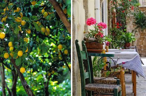 giardino mediterraneo il giardino mediterraneo ohmydesign