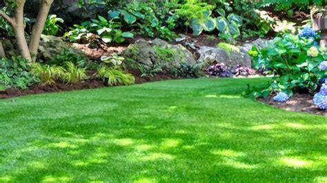 realistic artificial grass sep  reviews
