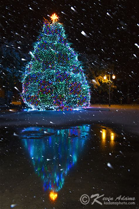 snowball lights for christmas tree photography digital after 187 archive 187 photographing falling snow at