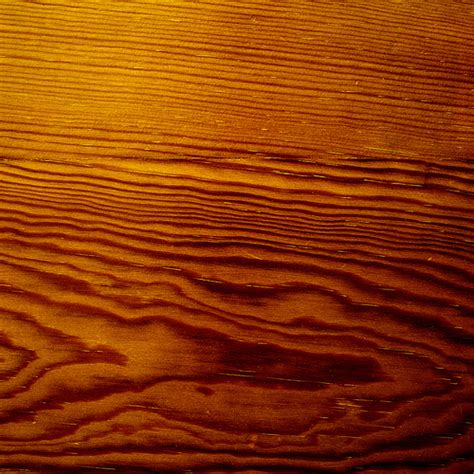 define wood wood grain definition meaning