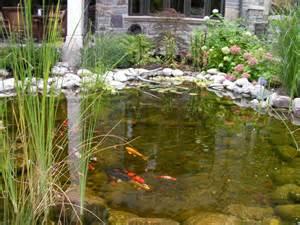 Home Design Shows Canada ecosystem ponds genoscape inc landscaping amp design