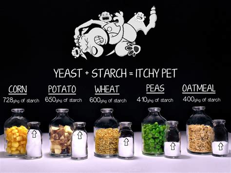 whole grains yeast infection does grain cause yeast infections in dogs