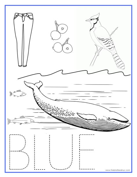 Color Sheet by Blue Color Activity Sheet Repinned By Totetude