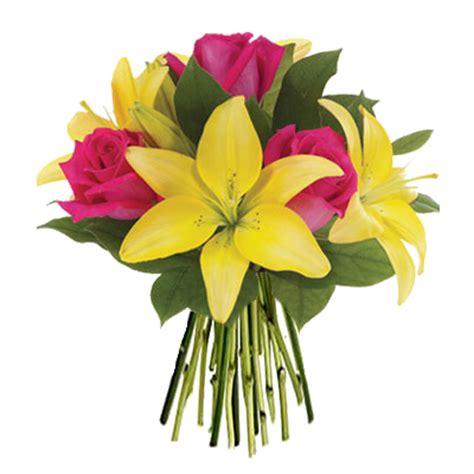 sognare fiori gialli italia in fiore comprare e inviare prezzo
