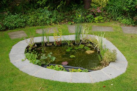 pictures of small backyard ponds water cozy home plans