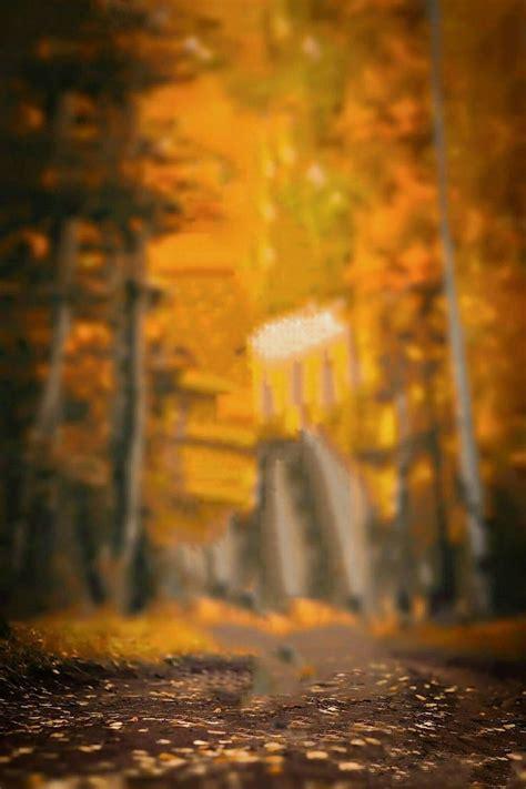 great   blur background  blur photo background