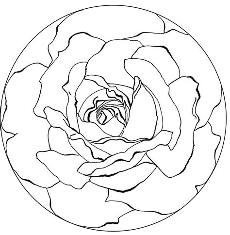 coloring page rose flower free printable rose mandala coloring pages coloring page