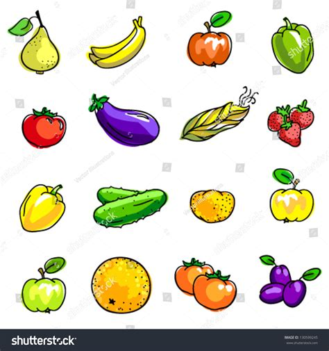 lychee fruit drawing vector illustration vegetables fruits stock