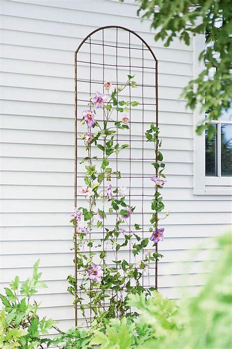 trellis florist 17 best images about trellises supports on