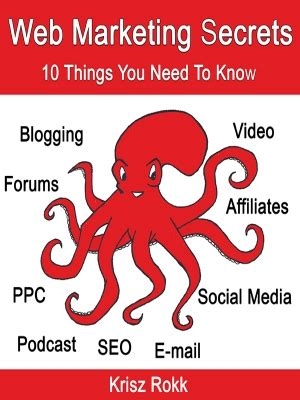 Web marketing secrets 10 things you need to know strength in business srl prlog