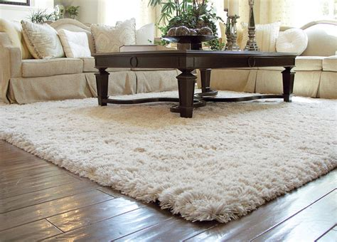 Rug For Living Room by Auroroa Borealis Shag Rug Traditional Living Room